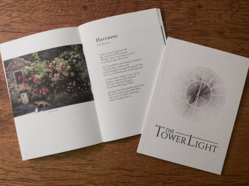 The Tower Light – Fall 2017